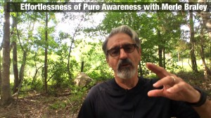 Effortlessness of Pure Awareness